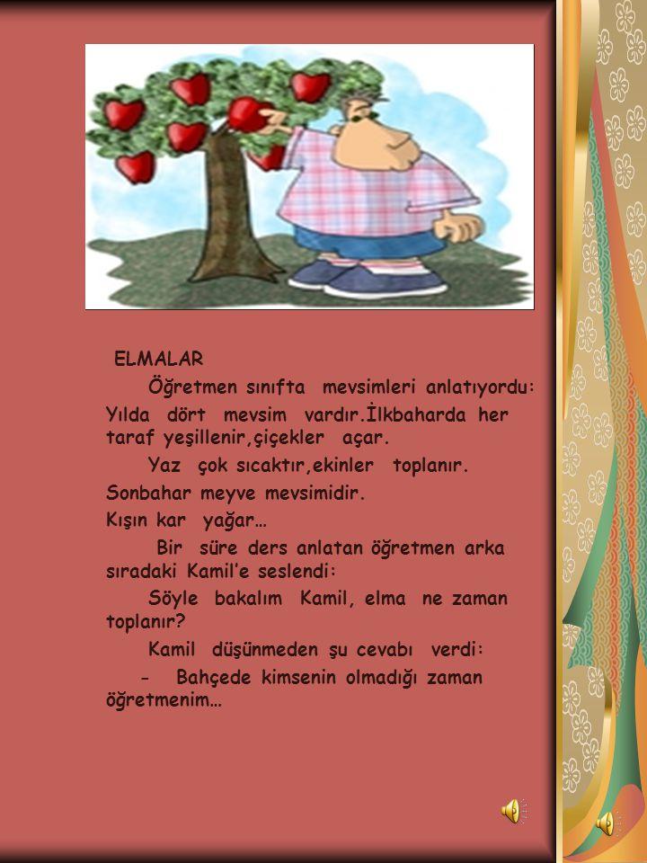 ELMALAR Öğretmen sınıfta mevsimleri anlatıyordu: Yılda dört mevsim vardır.İlkbaharda her taraf yeşillenir,çiçekler açar.