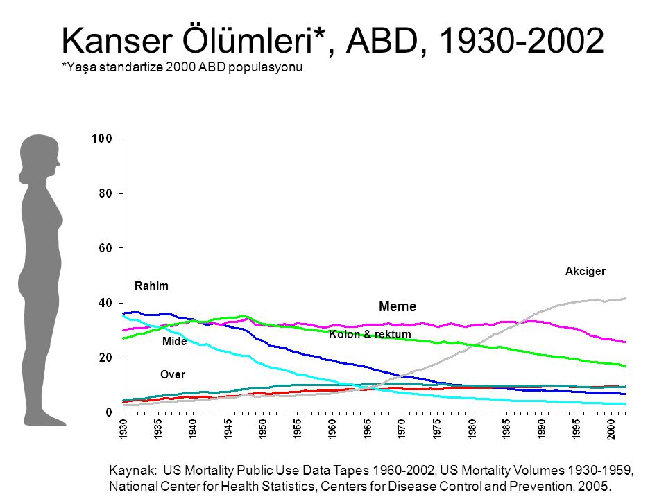 Kanser Ölümleri*, ABD, 1930-2002 *Yaşa standartize 2000 ABD populasyonu. Akciğer. Rahim. Meme. Kolon & rektum.