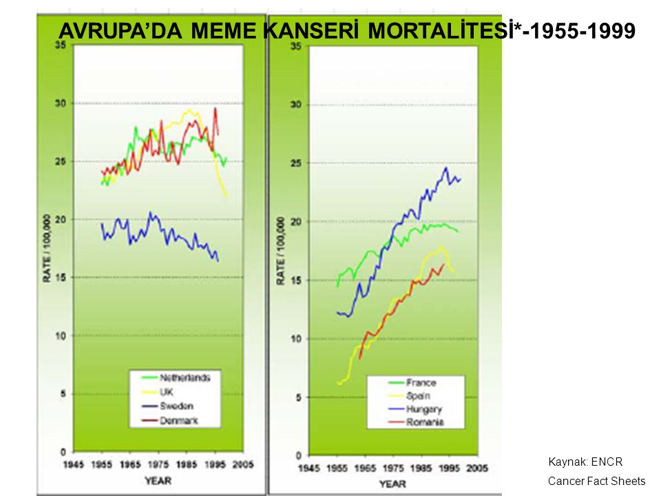 AVRUPA'DA MEME KANSERİ MORTALİTESİ*-1955-1999
