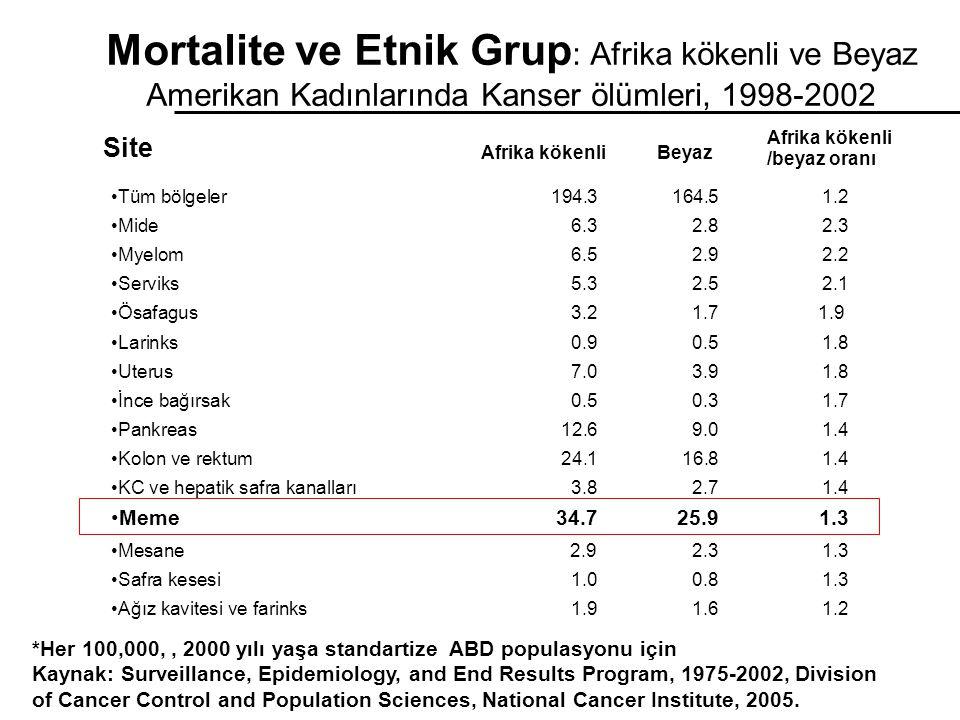 Mortalite ve Etnik Grup: Afrika kökenli ve Beyaz Amerikan Kadınlarında Kanser ölümleri, 1998-2002