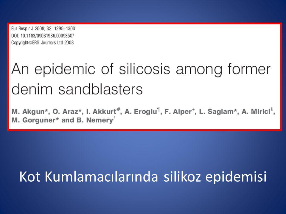 Kot Kumlamacılarında silikoz epidemisi