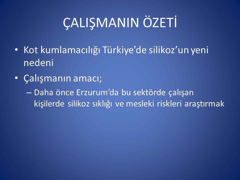 ÇALIŞMANIN ÖZETİ Kot kumlamacılığı Türkiye'de silikoz'un yeni nedeni