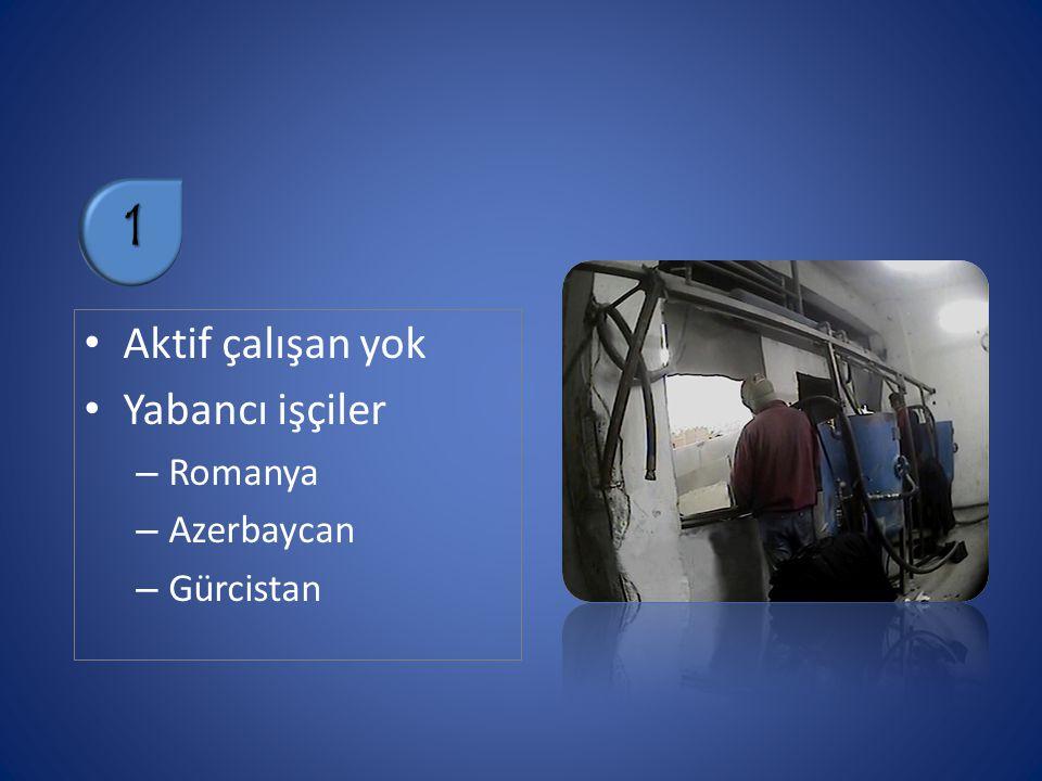 1 Aktif çalışan yok Yabancı işçiler Romanya Azerbaycan Gürcistan