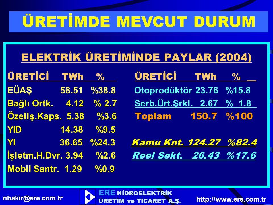 ELEKTRİK ÜRETİMİNDE PAYLAR (2004)
