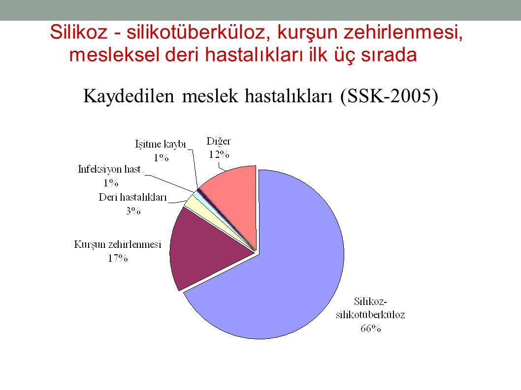 Kaydedilen meslek hastalıkları (SSK-2005)