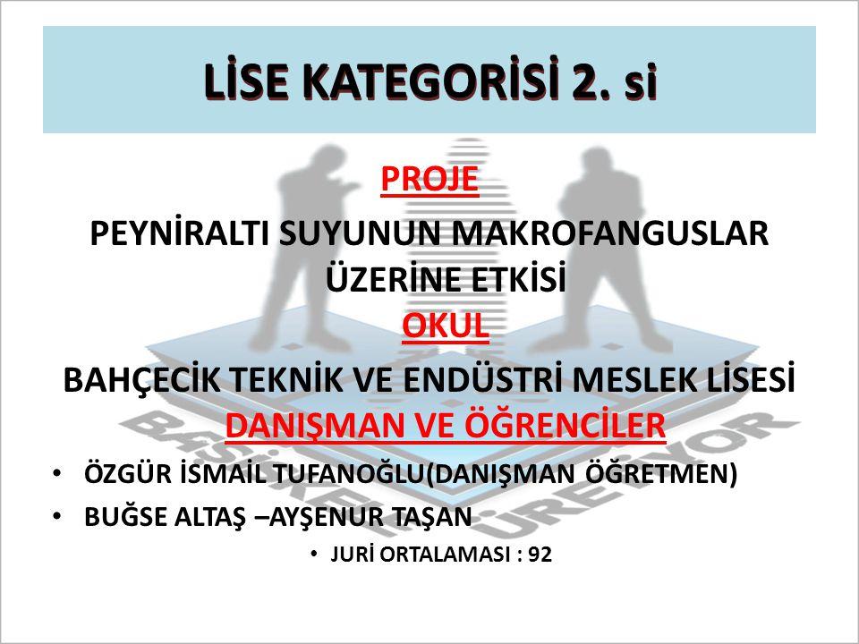LİSE KATEGORİSİ 2. si PROJE