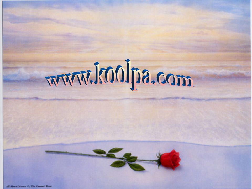 www.koolpa.com