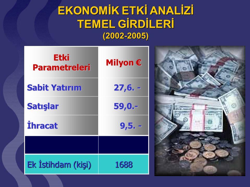EKONOMİK ETKİ ANALİZİ TEMEL GİRDİLERİ (2002-2005)