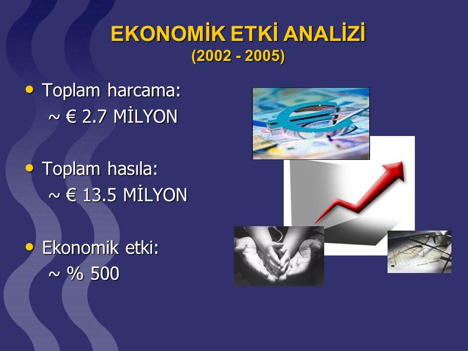 EKONOMİK ETKİ ANALİZİ (2002 - 2005)