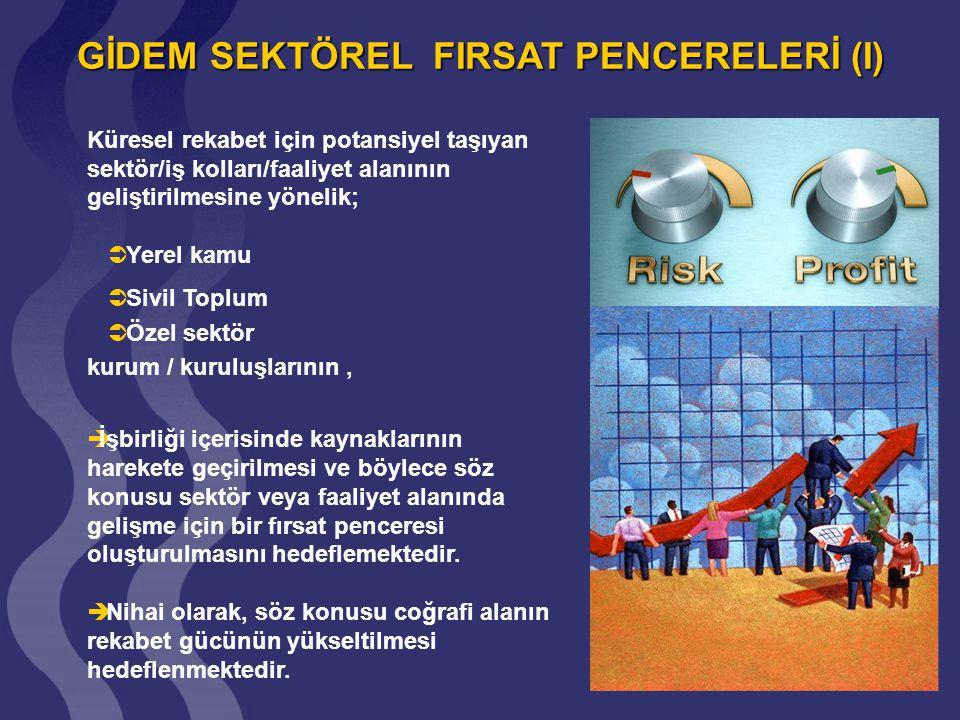 GİDEM SEKTÖREL FIRSAT PENCERELERİ (I)