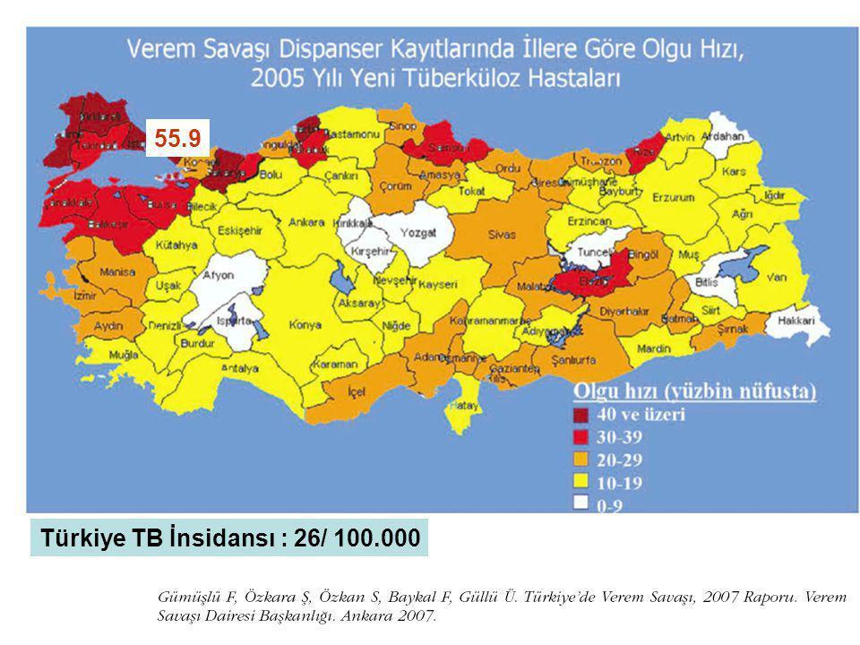 55.9 Türkiye TB İnsidansı : 26/ 100.000
