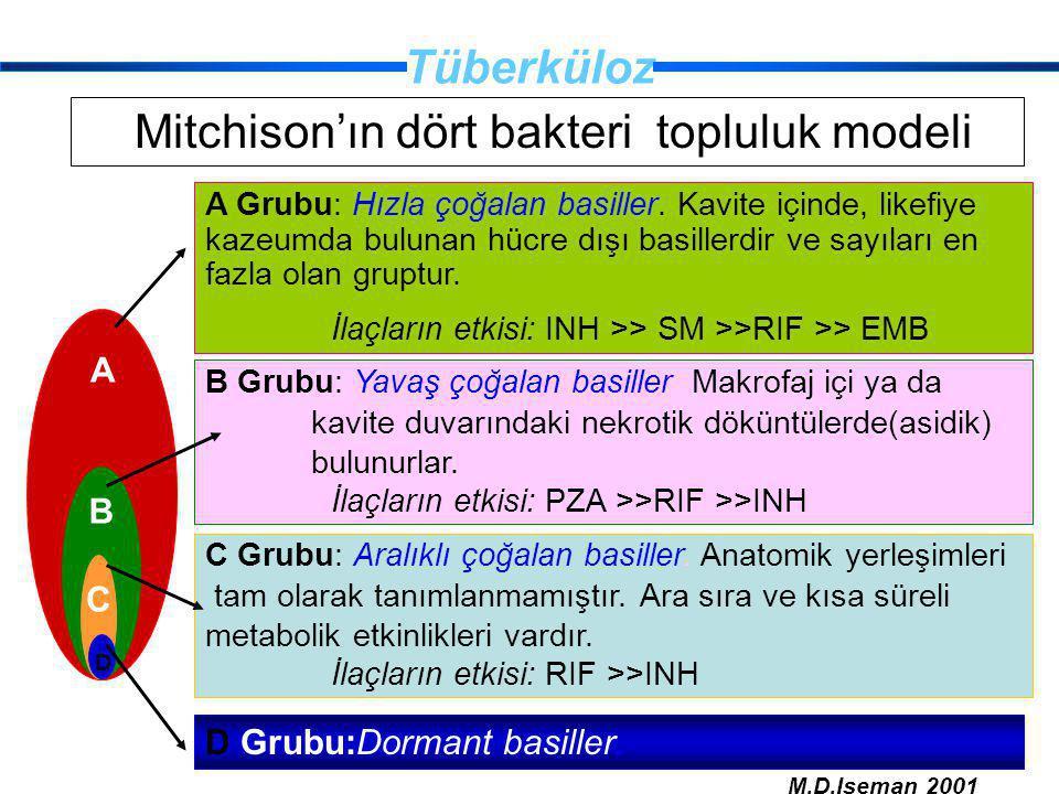 Mitchison'ın dört bakteri topluluk modeli