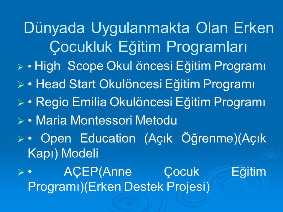Dünyada Uygulanmakta Olan Erken Çocukluk Eğitim Programları