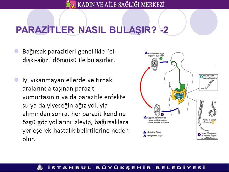 PARAZİTLER NASIL BULAŞIR -2