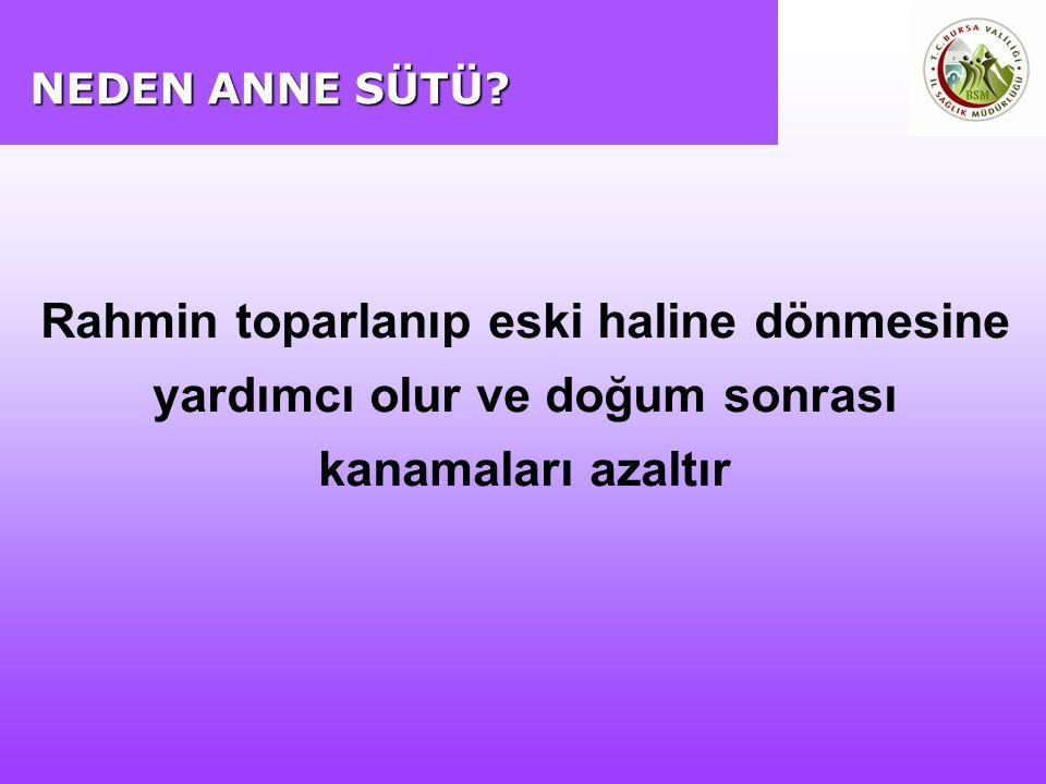 NEDEN ANNE SÜTÜ.