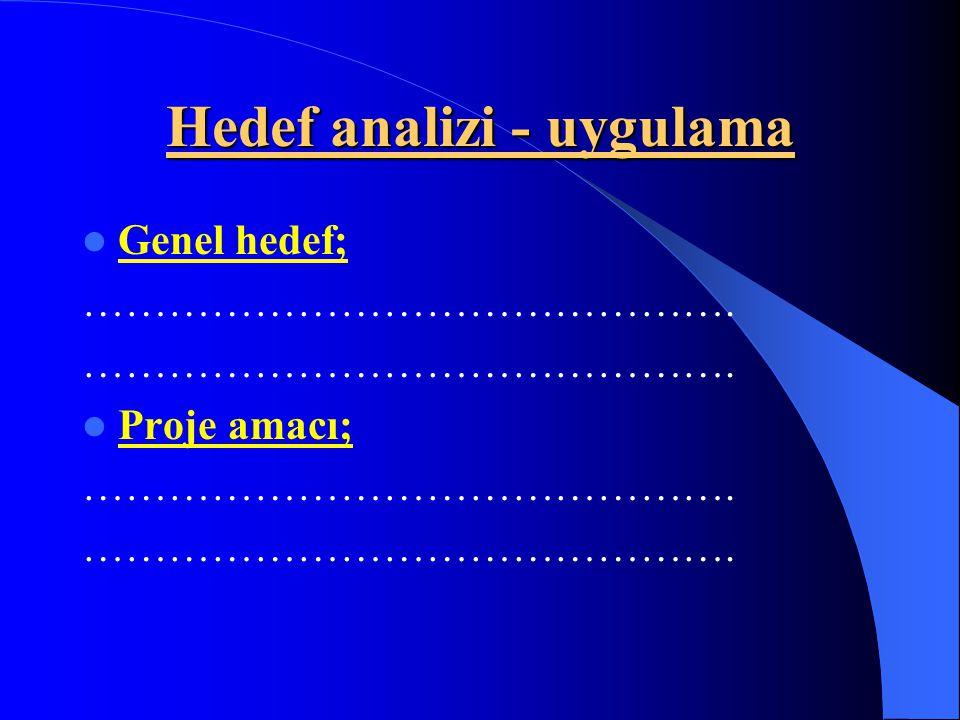 Hedef analizi - uygulama