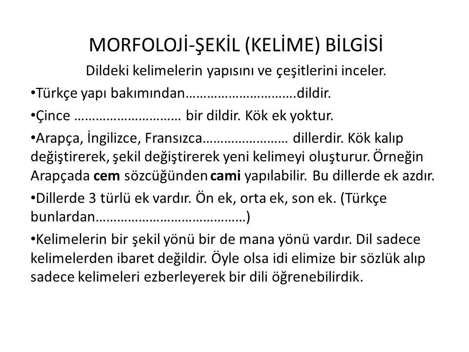 MORFOLOJİ-ŞEKİL (KELİME) BİLGİSİ