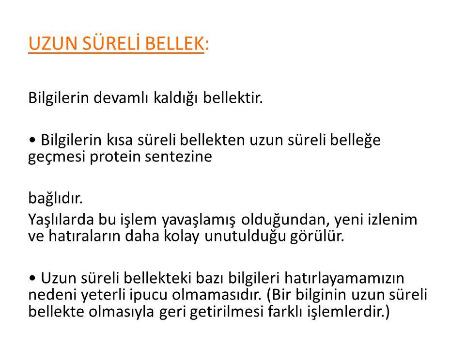 UZUN SÜRELİ BELLEK: