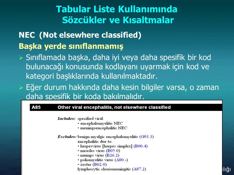 Tabular Liste Kullanımında Sözcükler ve Kısaltmalar