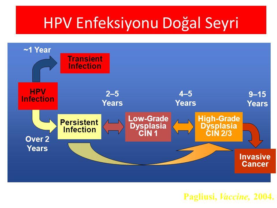 HPV Enfeksiyonu Doğal Seyri