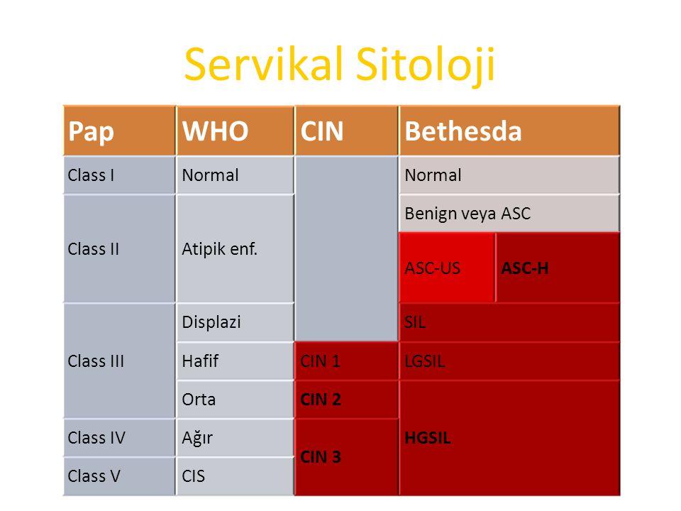 Servikal Sitoloji Pap WHO CIN Bethesda Class I Normal Class II