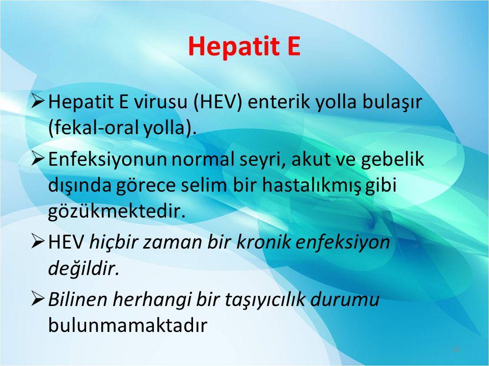 Hepatit E Hepatit E virusu (HEV) enterik yolla bulaşır (fekal-oral yolla).
