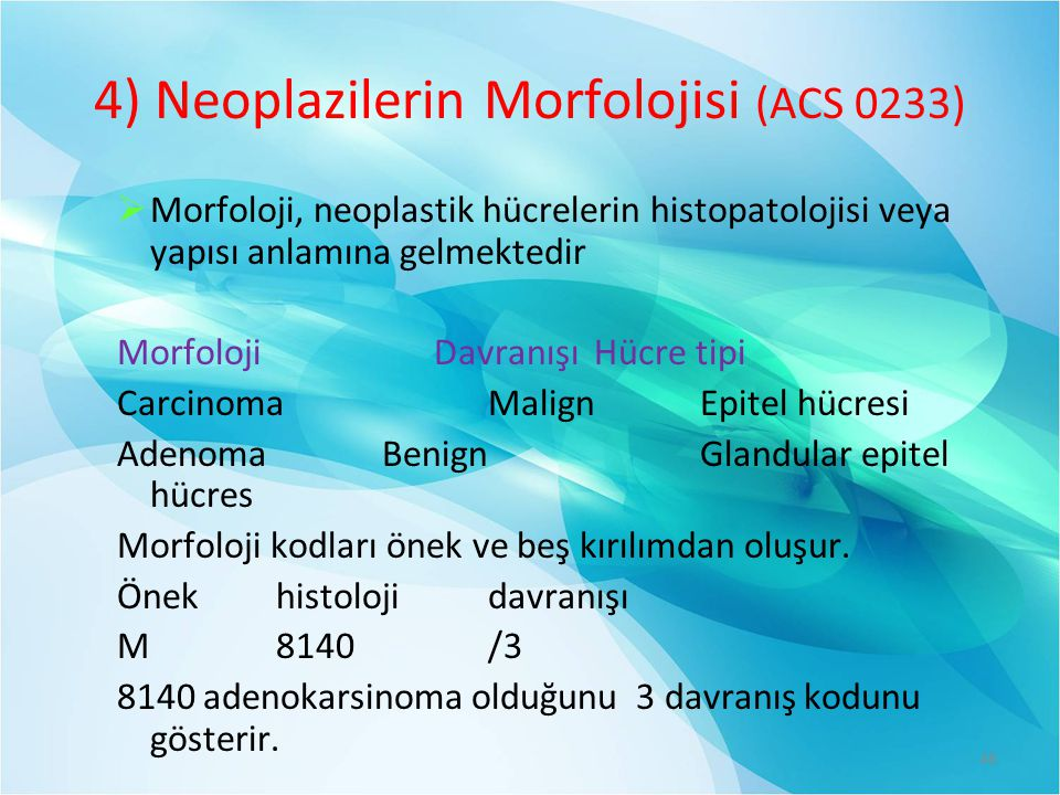 4) Neoplazilerin Morfolojisi (ACS 0233)