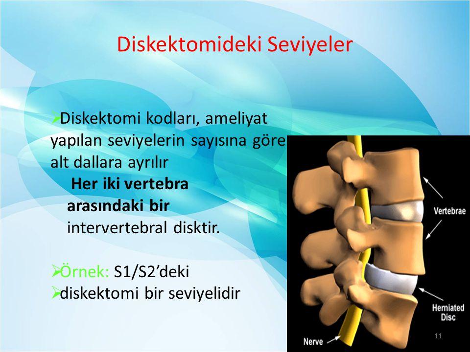 Diskektomideki Seviyeler
