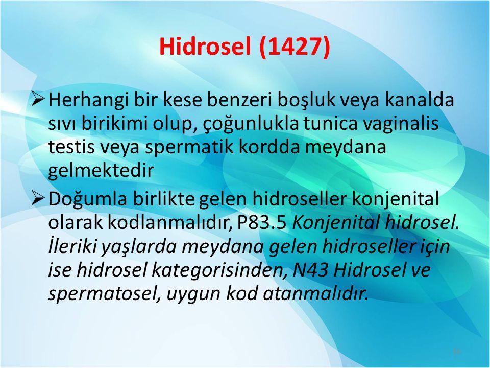 Hidrosel (1427)