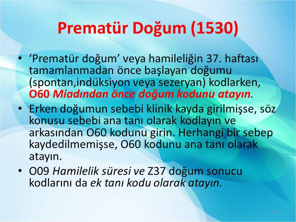 Prematür Doğum (1530)