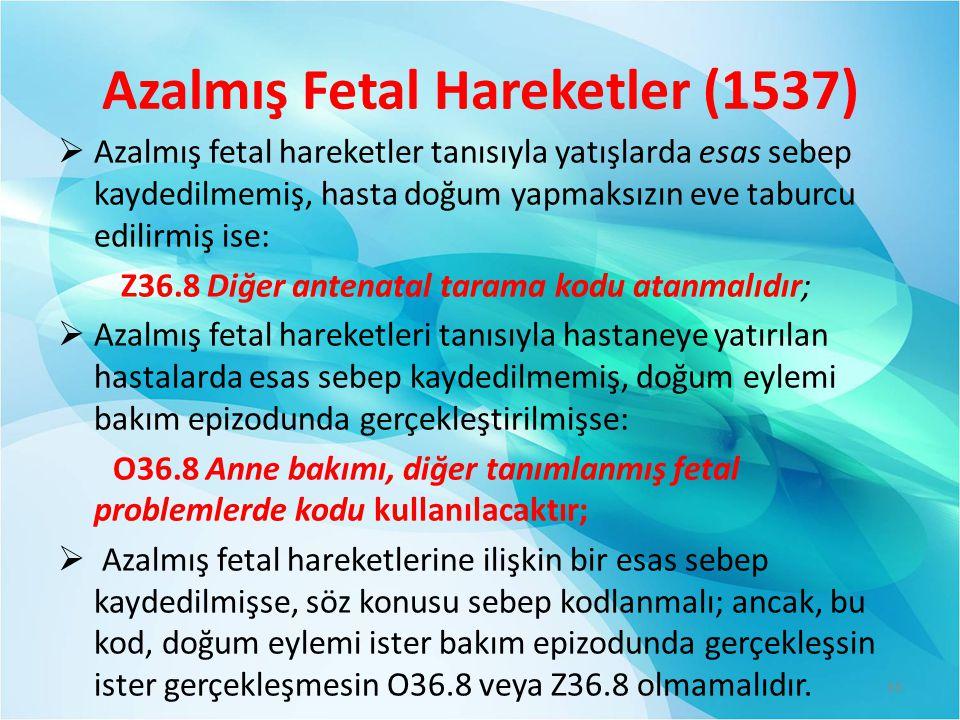 Azalmış Fetal Hareketler (1537)