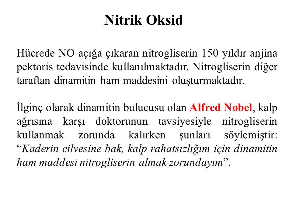 Nitrik Oksid