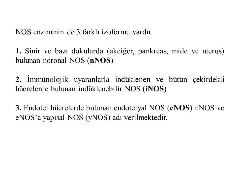 NOS enziminin de 3 farklı izoformu vardır.