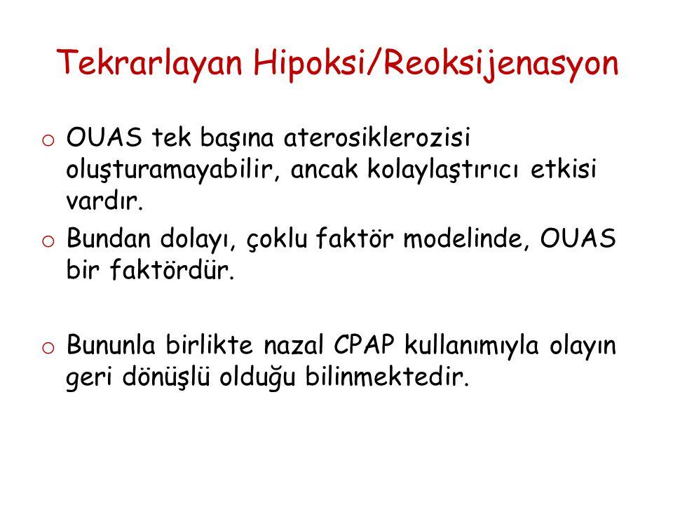Tekrarlayan Hipoksi/Reoksijenasyon