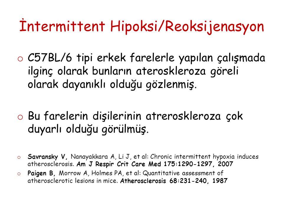 İntermittent Hipoksi/Reoksijenasyon