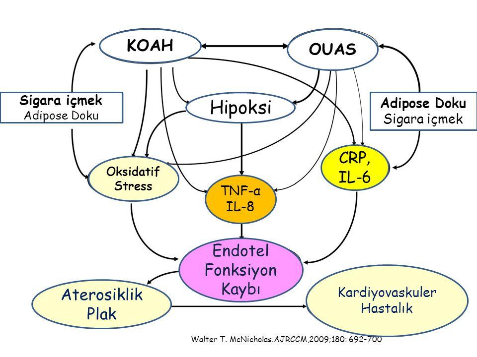 Hipoksi KOAH OUAS CRP, IL-6 Endotel Fonksiyon Kaybı Aterosiklik Plak