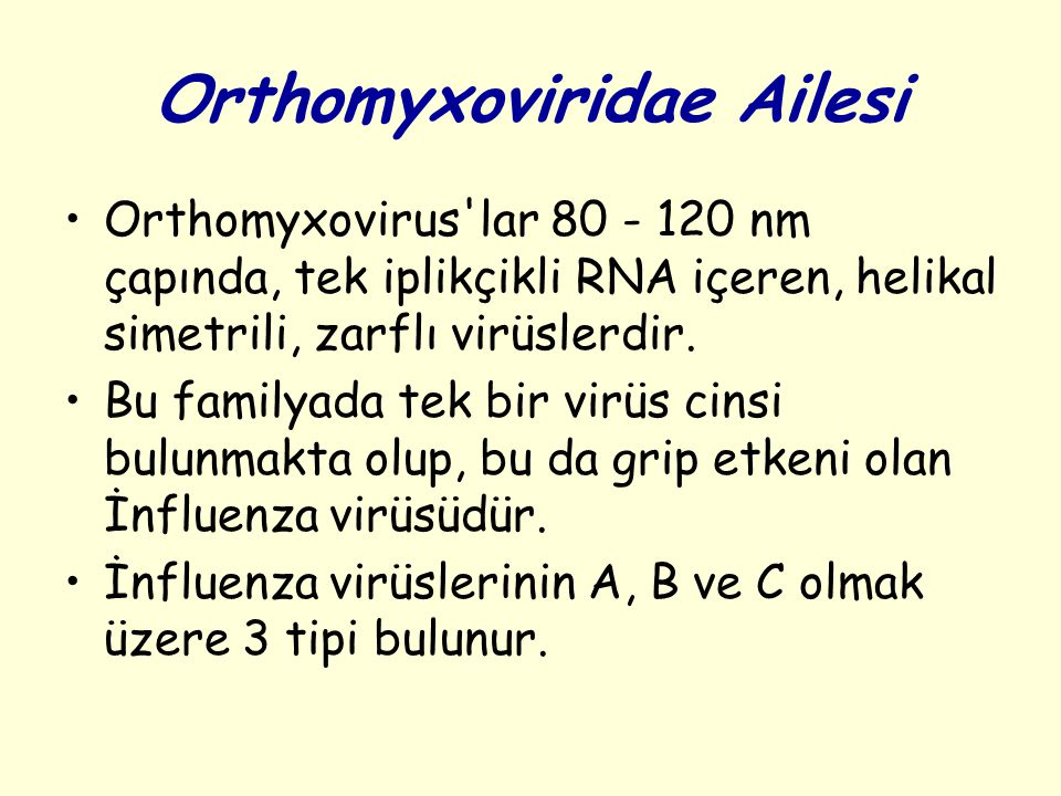 Orthomyxoviridae Ailesi