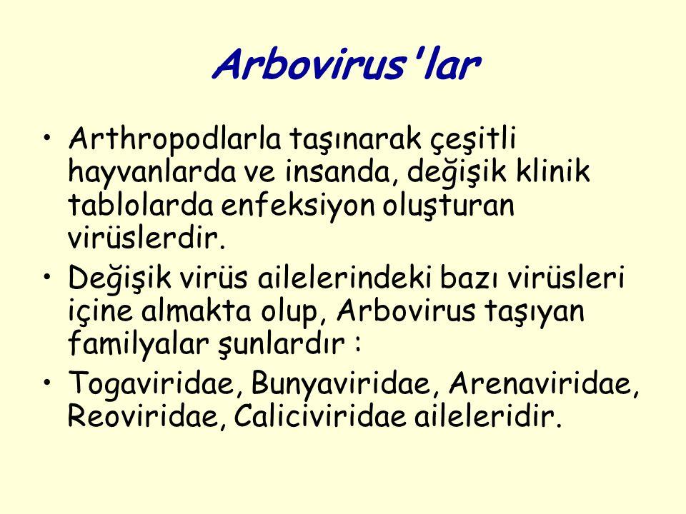 Arbovirus lar Arthropodlarla taşınarak çeşitli hayvanlarda ve insanda, değişik klinik tablolarda enfeksiyon oluşturan virüslerdir.