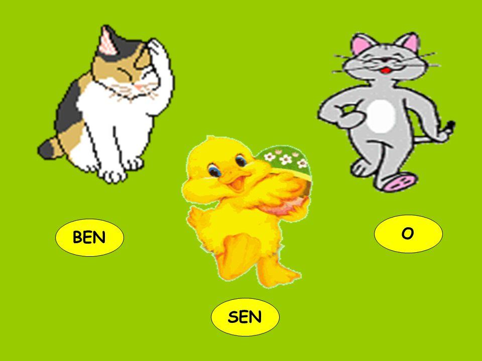 O BEN SEN