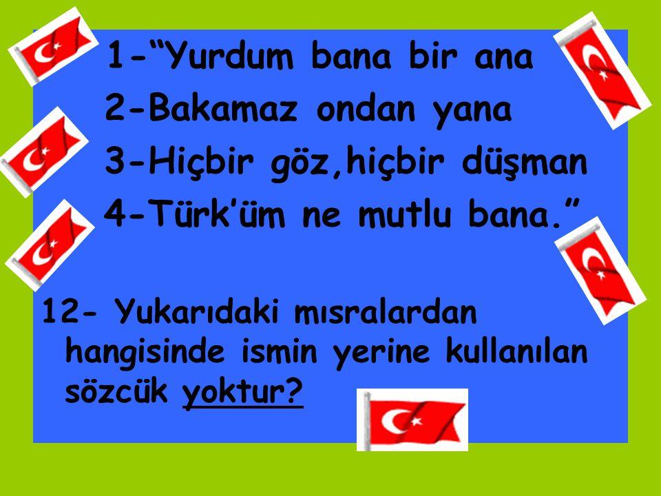 3-Hiçbir göz,hiçbir düşman 4-Türk'üm ne mutlu bana.