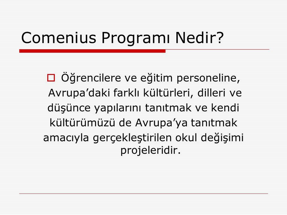 Comenius Programı Nedir
