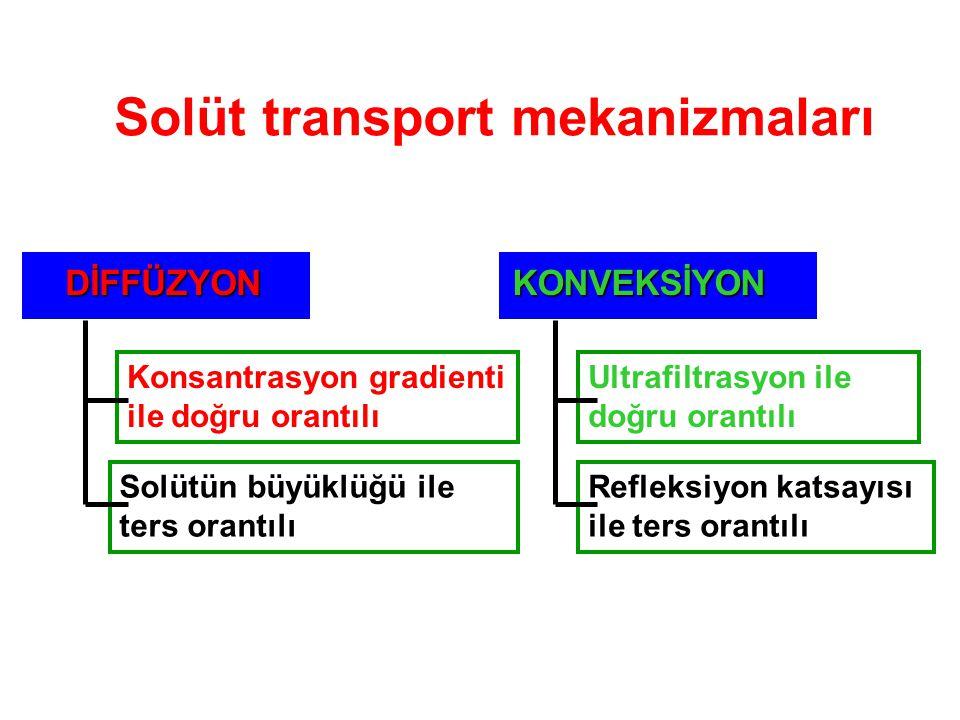 Solüt transport mekanizmaları