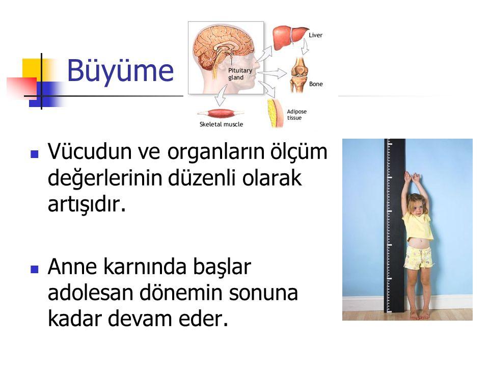 Büyüme Vücudun ve organların ölçüm değerlerinin düzenli olarak artışıdır.