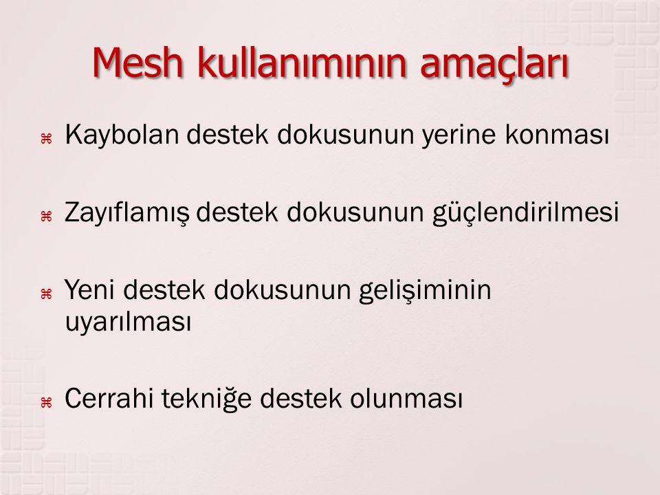 Mesh kullanımının amaçları