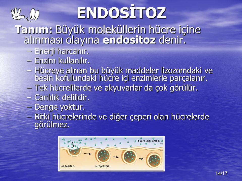 ENDOSİTOZ Tanım: Büyük moleküllerin hücre içine alınması olayına endositoz denir. Enerji harcanır.