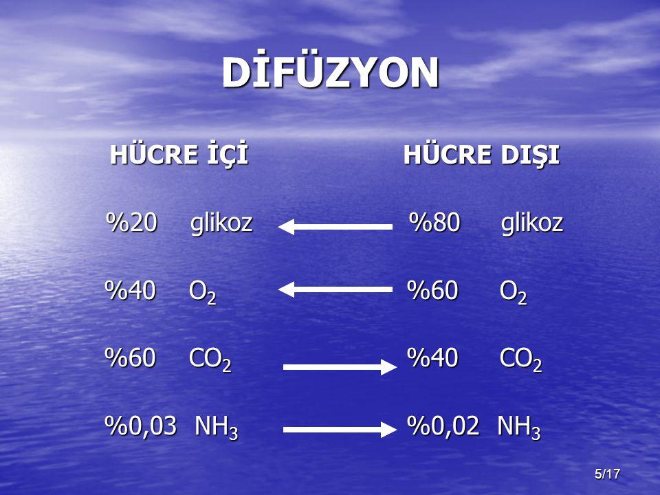 DİFÜZYON HÜCRE İÇİ %20 glikoz %40 O2 %60 CO2 %0,03 NH3 HÜCRE DIŞI