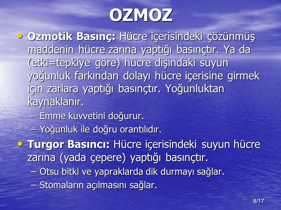 OZMOZ