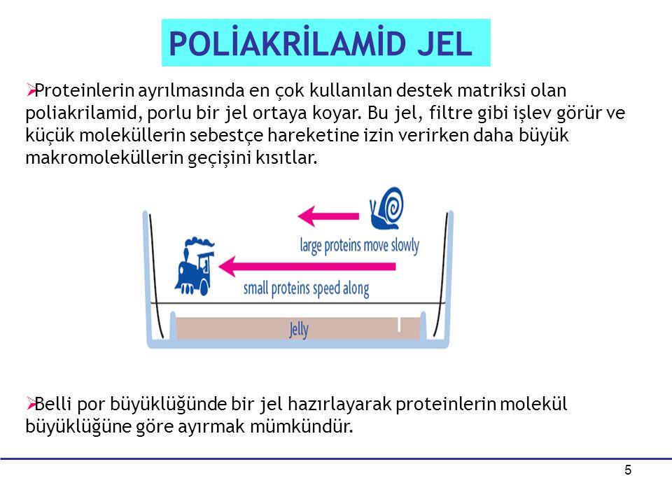 POLİAKRİLAMİD JEL