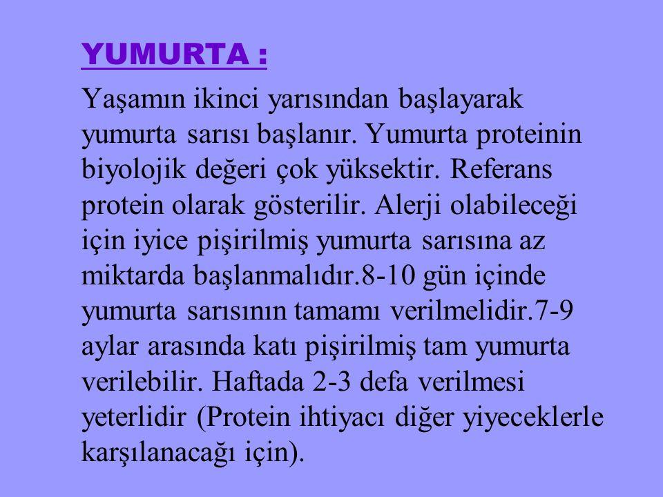 YUMURTA :