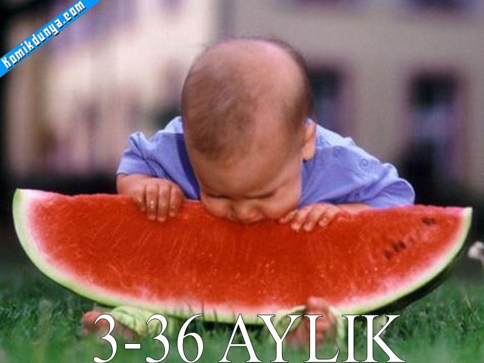 3-36 AYLIK